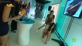 Sara Carbonero Video Con Caida y Upskirt Enseñando Las Bragas
